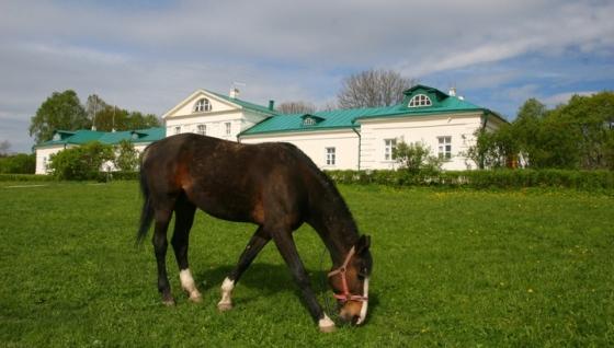 Tolstoy Home
